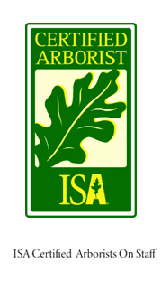 ISA Certified Arborists on Staff